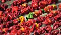 Gaziantep'ten dünyaya kuru sebze yolculuğu