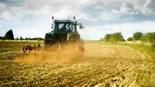 Tarım ÜFE ekimde azaldı