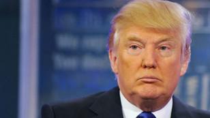 ABD'de yeni keşfedilen güve türüne Trump adı verildi