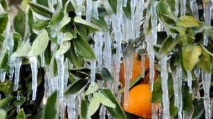 Meteorolojiden zirai don ve çığ uyarısı