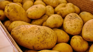 Patates üreticisi acil pazar arıyor