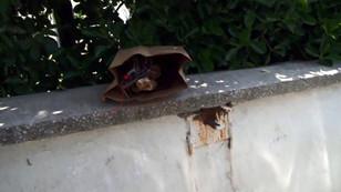 Üsküdar'da hastane bahçesinde bomba paniği