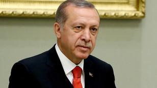 Defarges Erdoğan'dan özür diledi