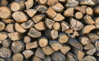 2,4 milyar insan yemeğini odunla pişiriyor
