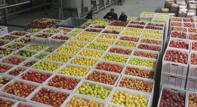 Türkiye Ürün Borsası kuruldu
