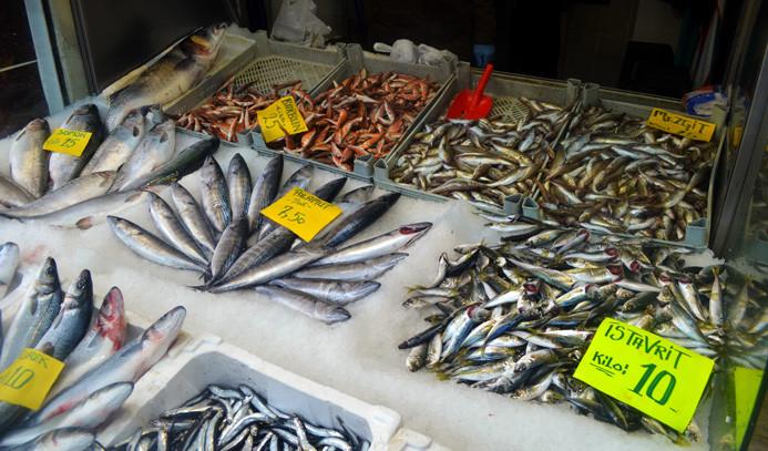 Balık yükselişe geçti