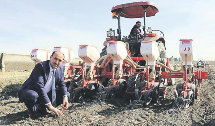 Çukurova'da mısır ekimi başladı