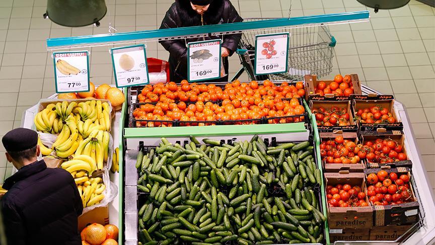 'Türk tarımına yönelik kısıtlamalar Rus halkına zarar veriyor'