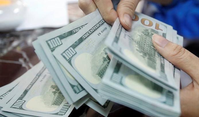 Dolar sakin seyri sürdürerek açıldı