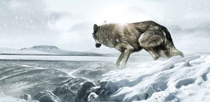 Onat Kutlar 'Leopar'la anılacak