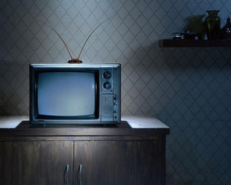 1190 radyo ve TV yayın yapıyor