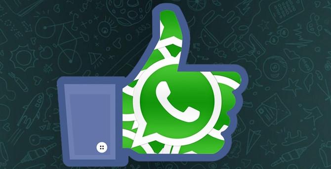 Tek tuşla WhatsApp
