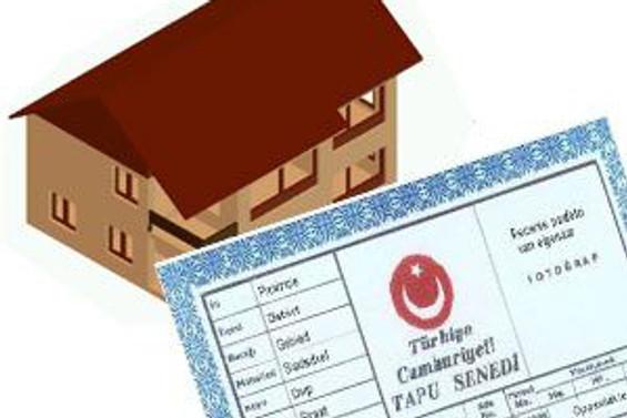 Türkiye'de tapular erkeklerde