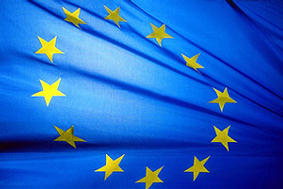 Uluslararası Avrupa Hareketi 2010'da Türkiye'de