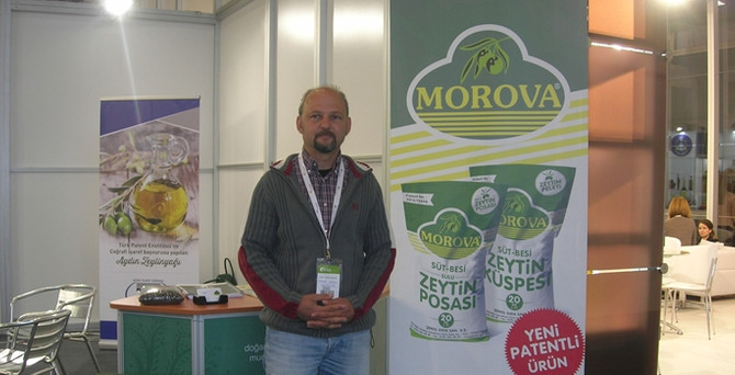 Morova, zeytinden yem yaptı Kuveyt'e ihraç ediyor