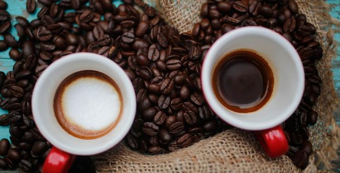 Zapatista, Türkiye'ye bio organik kahve içirecek