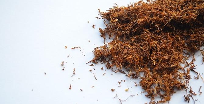 Tütünde açık artırma fiyatları belirlendi