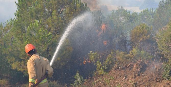 İki yangında 20 hektar alan yandı