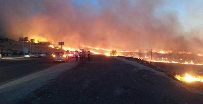 Diyarbakır'da yangın çıktı