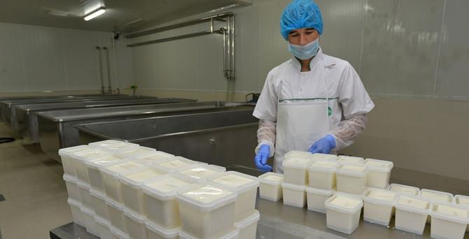 BESAŞ, beyaz peynir üretimine başladı