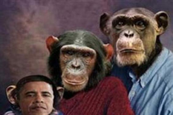 Obama'yı maymuna benzettiler