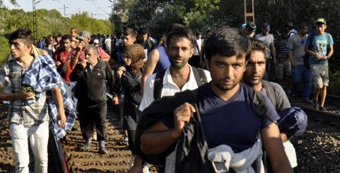 3 bin sığınmacı Viyana'ya geçti