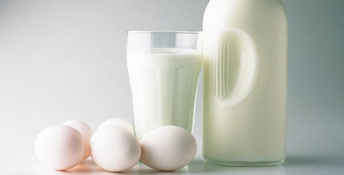 Süt ve yumurta üretimi temmuzda arttı