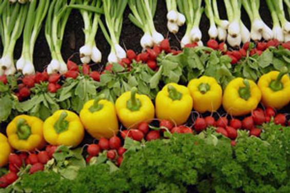 Yaş sebze meyve ihracatı arttı