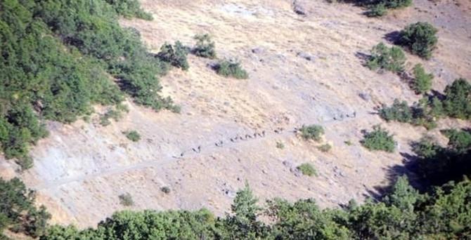 PKK'nın 1 ton bombası ele geçirildi