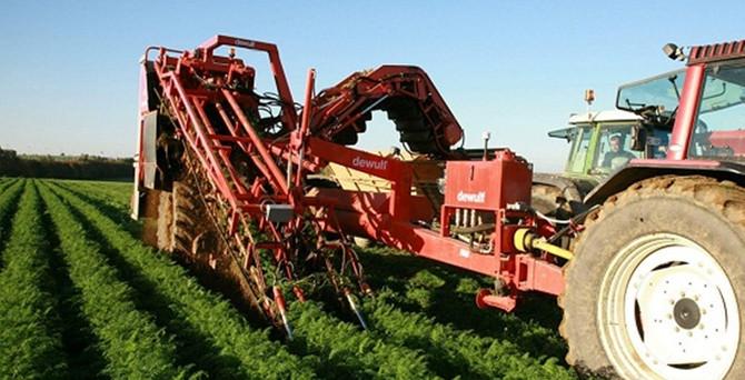 Türkiye'nin karasal alanının yüzde 31'i tarım sahası
