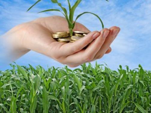 Tarım ÜFE yüzde 1,80 arttı