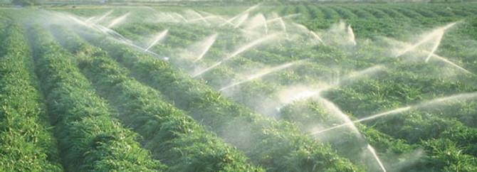 İyi tarım yapan çiftçiye destek