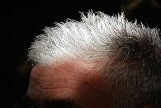 Orta yaşlı erkeklerin yeni gözdesi Wasabia