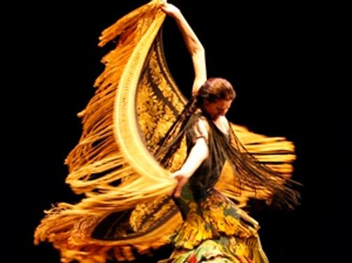 'Sonsuz kollu dansçı'yla buluşma