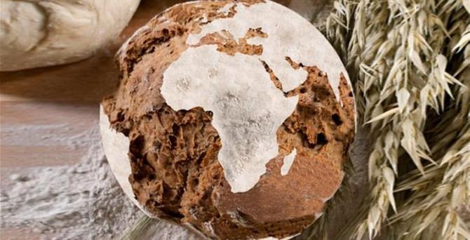 'Kirlenmiş gıda' her yıl yüz binleri öldürüyor