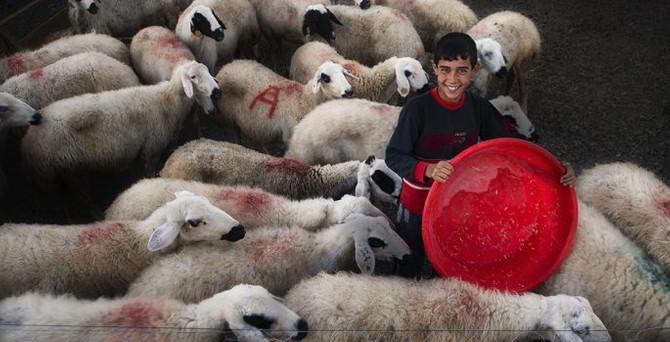 7. Tarım ve İnsan Fotoğraf Yarışması sonuçlandı