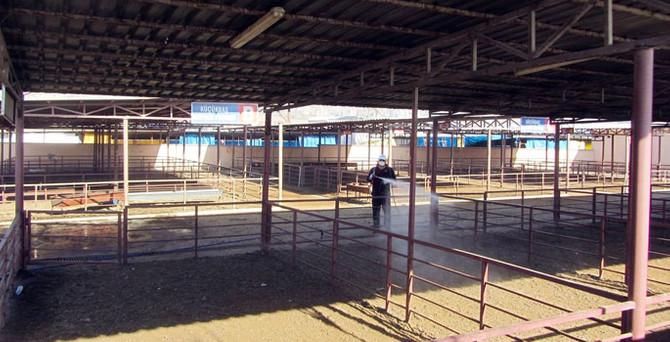 Kahramanmaraş'ta canlı hayvan pazarı kapatıldı
