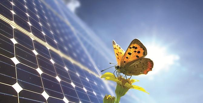Vefa, güneş enerjisinden elektrik üretecek