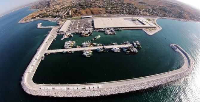 İstanbul, balığı Avrupa'nın en büyük tesisinden alıyor