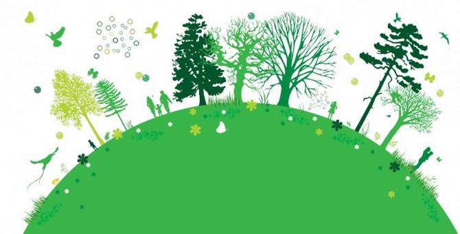 """TEMA Vakfı'nın """"Yeşil Yaka"""" programı ile şirketler ekolojik okuryazarlık öğrenecek"""