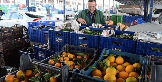 Yaş meyve sebze ihracatında yeni adres: Orta Asya ve Uzakdoğu