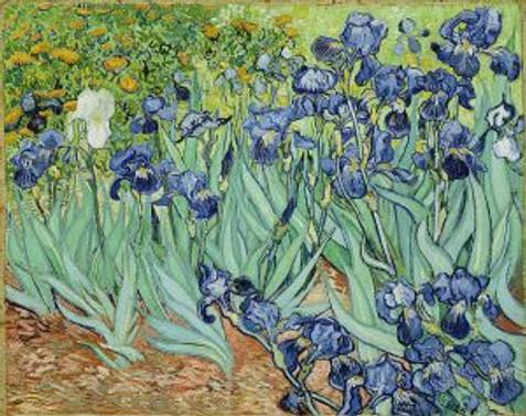 Van Gogh tabloları Facebook'ta puzzle oldu