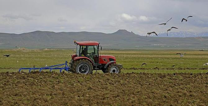 Tarım- ÜFE'de sınırlı düşüş