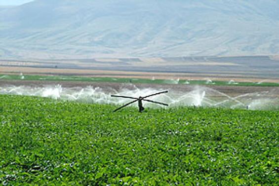 20 bin çiftçiye umut olacak proje