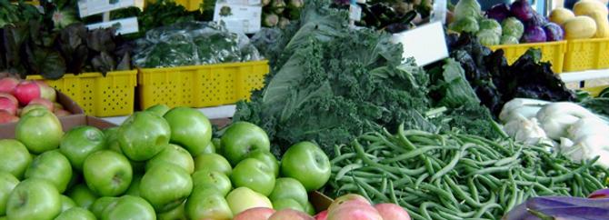 Mısır, gıda ihracatçıları için cazip pazar