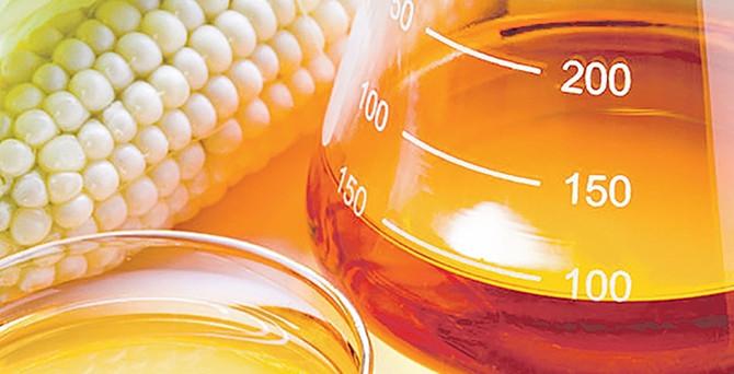 Nişasta bazlı şeker için kota yüzde 25 artırıldı
