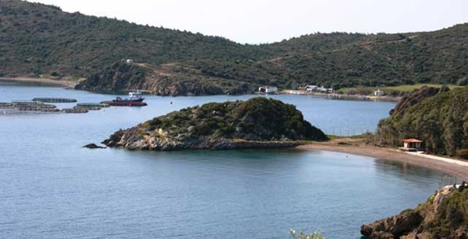 İzmir Yarımadası'nı imara açacak karar mahkemeye taşınıyor