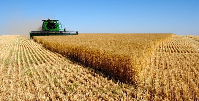 Tarım Kredi'den borç erteleme açıklaması