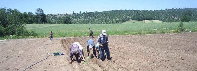 Çiftçiler, su sayacı uygulaması için ek süre istiyor