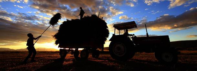 Bankalar, tarım sektörüne 32.6 milyar lira kredi verdi